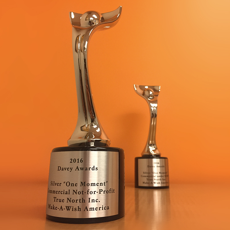 """Just as David defeated the mighty giant Goliath, The Davey Awards honors small agencies or """"Creative Davids"""" who """"derive their strength from big ideas, rather than stratospheric budgets."""