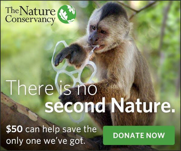 The Nature Conservancy banner ad that says 'There is no second Nature.'