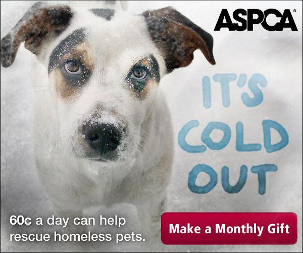 ASPCA Banner Ad